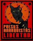 [Mexico] Situation actuelle de Carlos López, Fallon Roullier, Amelie Trudeu