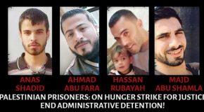Quatre grévistes de la faim font face à une dégradation de leur état de santé alors qu'ils continuent leur grève pour la liberté